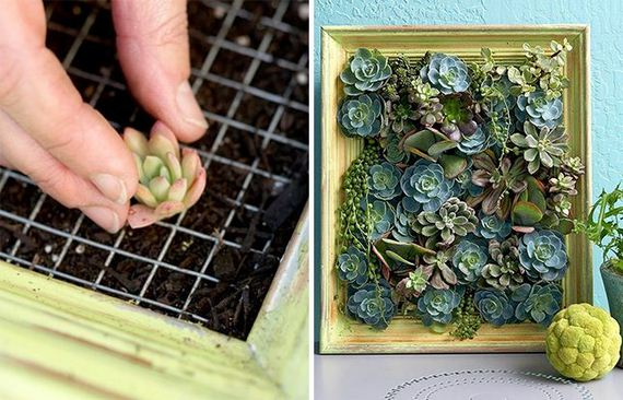 14-DIY-Vertical-Garden