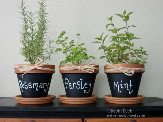 16-DIY-Pretty-Plant-Pots-You-Can-Create