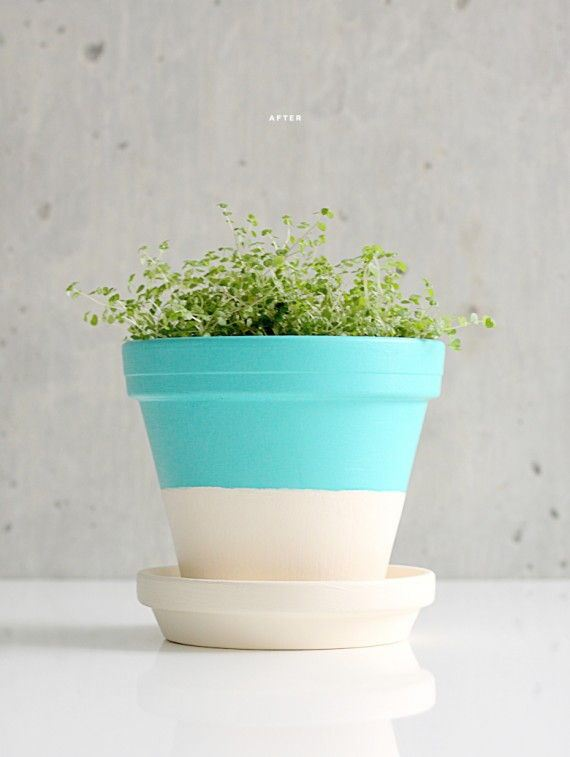 20-DIY-Pretty-Plant-Pots-You-Can-Create