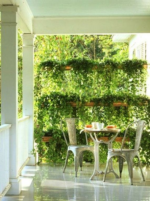 amazing ways to create privacy in your yard diycraftsguru