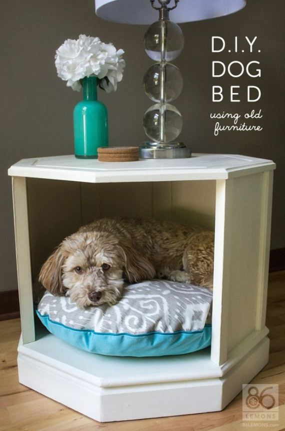 07-Beds - Pup