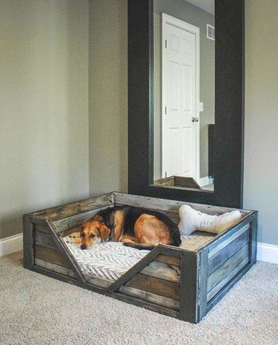 11-Beds - Pup