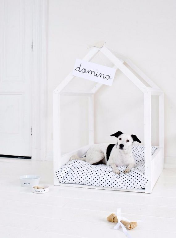 17-Beds - Pup