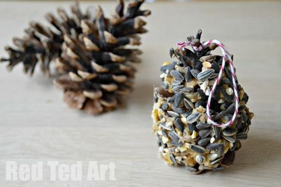 20-Homemade-Bird-Feeders