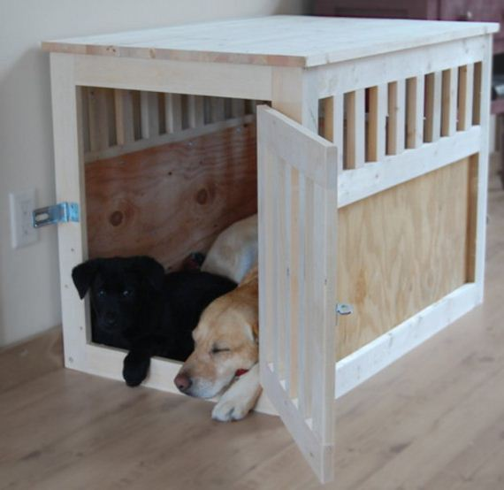 22-Beds - Pup