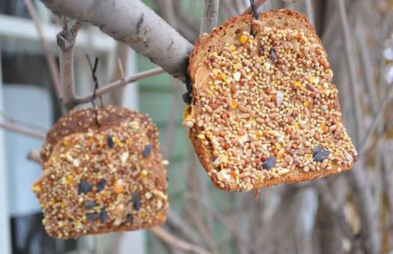 22-Homemade-Bird-Feeders