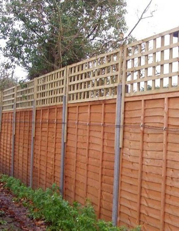 Amazing Ways To Create Privacy In Your Yard Diycraftsguru