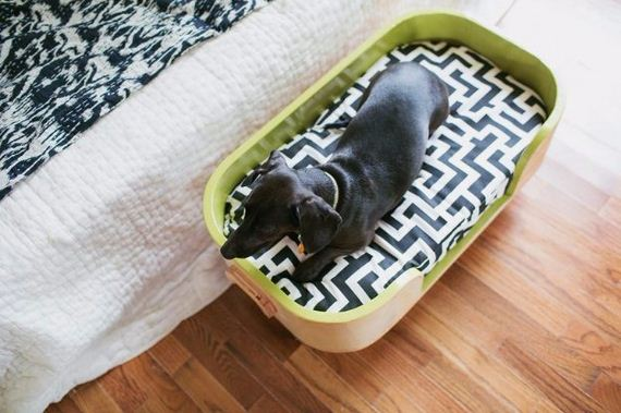 23-Beds - Pup