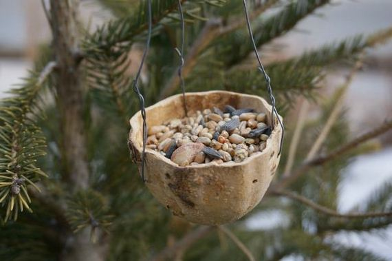 23-Homemade-Bird-Feeders