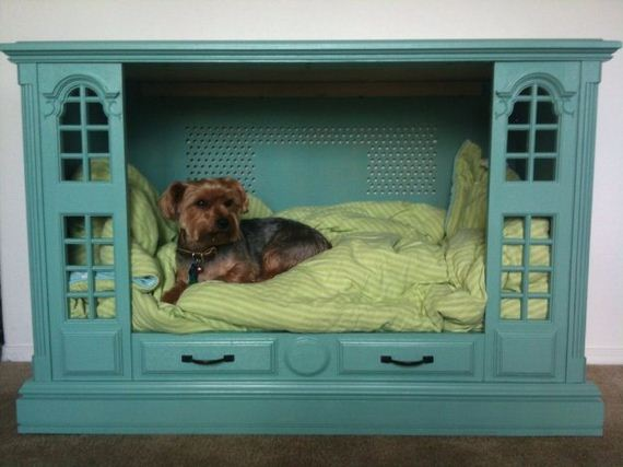 30-Beds - Pup
