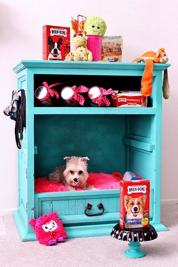 31-Beds - Pup