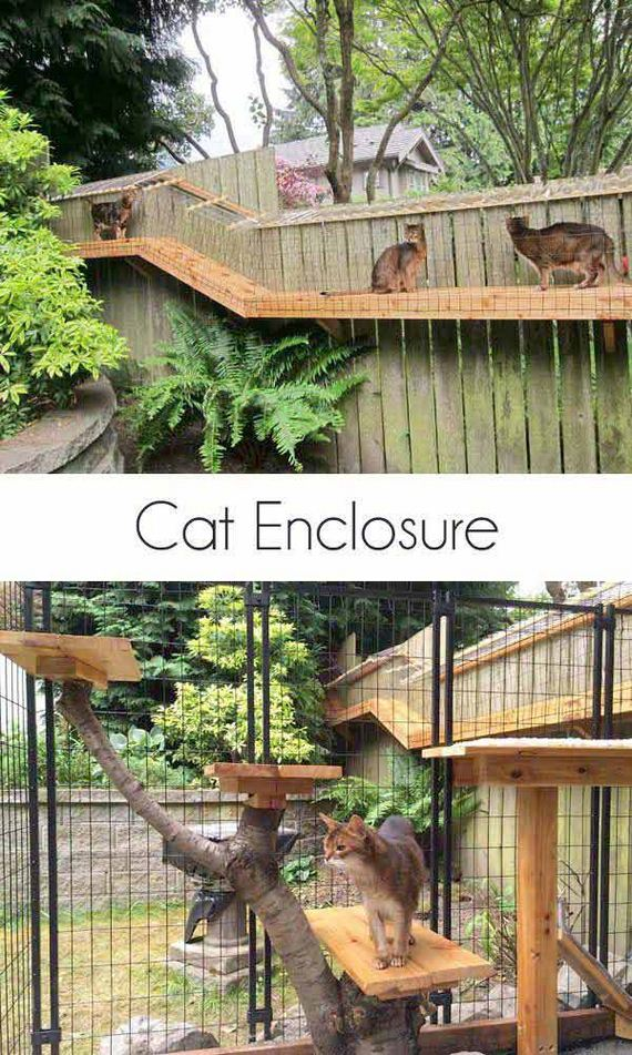 02-Projects-and-Tips-for-Pets-WooHome