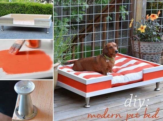 10-Projects-and-Tips-for-Pets-WooHome