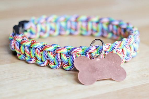 08-Doggy-Collars