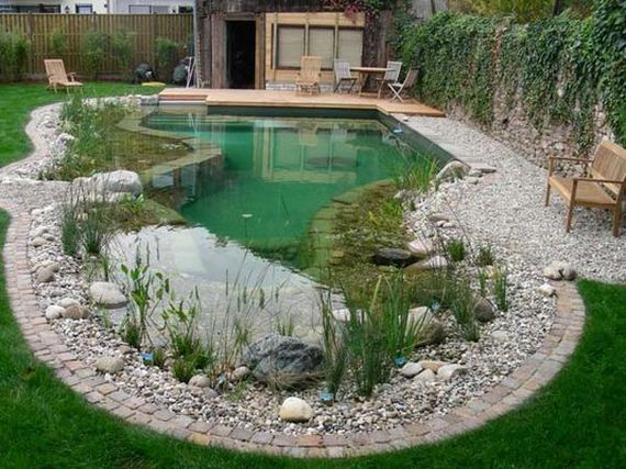 02-backyard-natural-swimming-pool