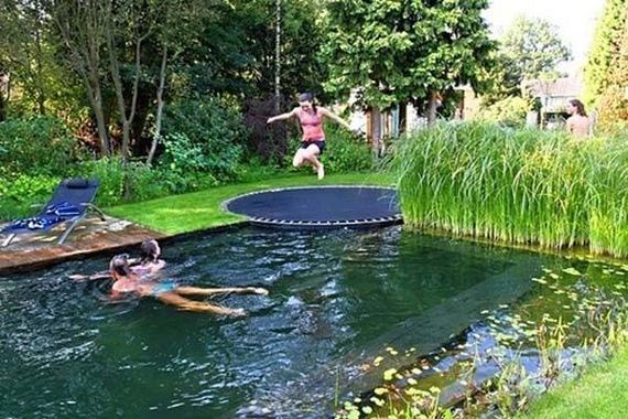 07-backyard-natural-swimming-pool
