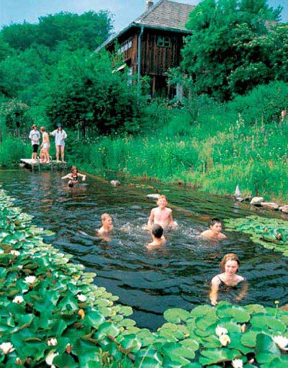 10-backyard-natural-swimming-pool