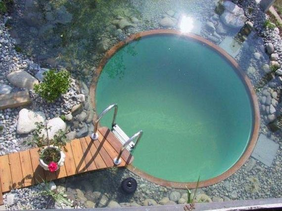 12-backyard-natural-swimming-pool