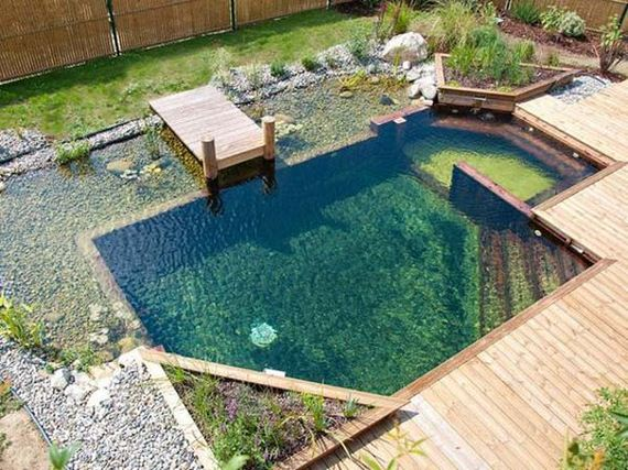 16-backyard-natural-swimming-pool