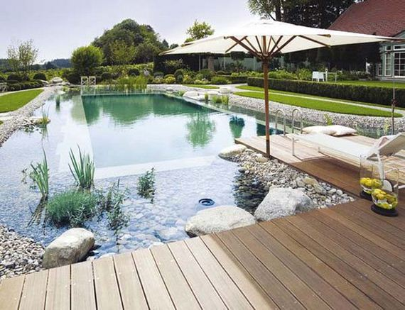 20-backyard-natural-swimming-pool