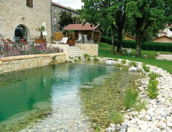 23-backyard-natural-swimming-pool
