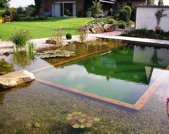 Amazing Backyard Natural Pools Diycraftsguru