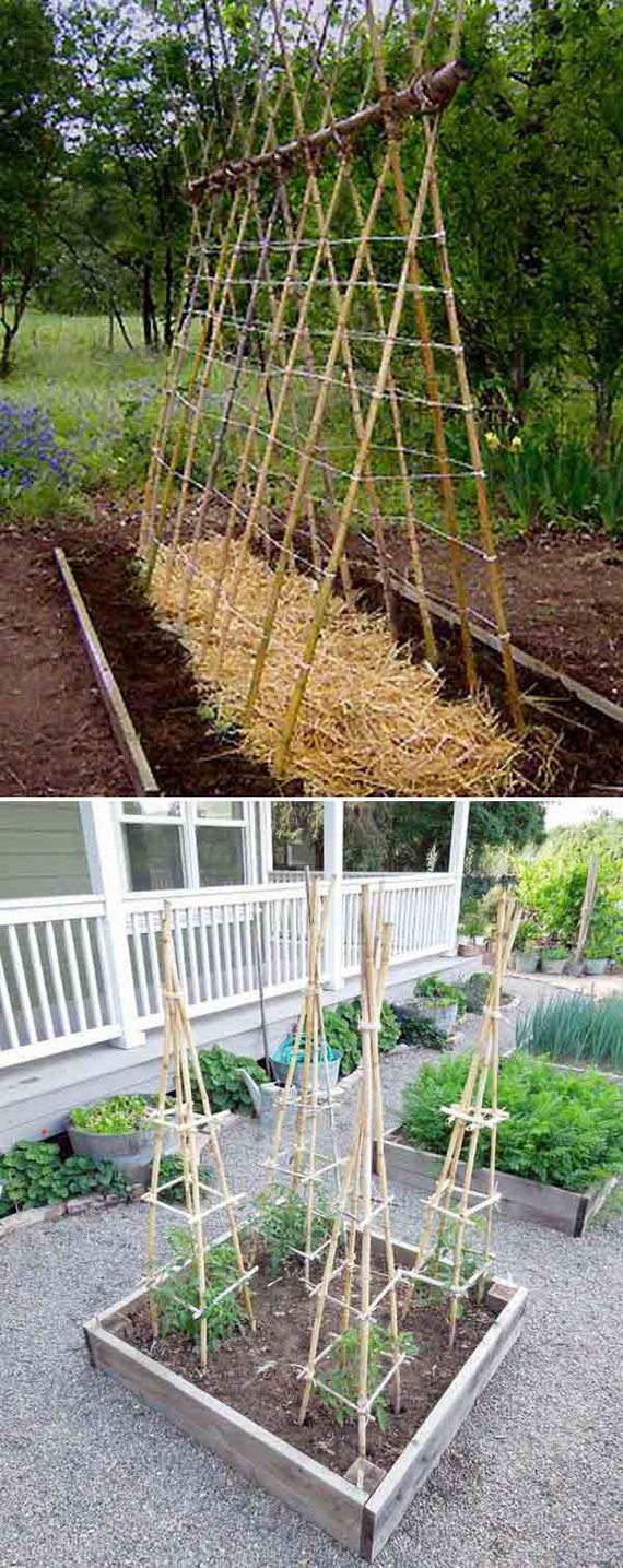 19-Create-Your-Bamboo-Projects