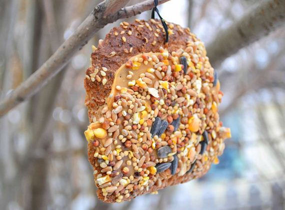 02-homemade-bird-feeders