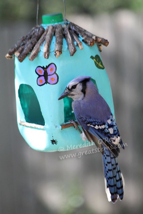 17-homemade-bird-feeders