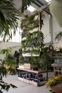 04-small-urban-garden-design-ideas