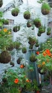 13-small-urban-garden-design-ideas