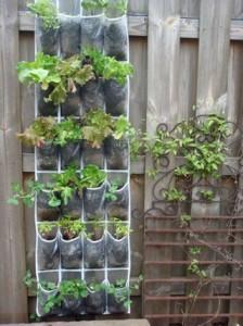25-small-urban-garden-design-ideas