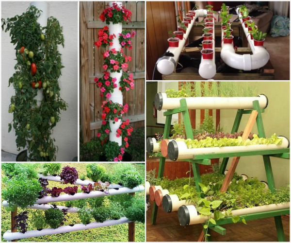 Pvc Garden Projects: Pvc Pipe Garden Projects & Then Glue Each Set On Top Of