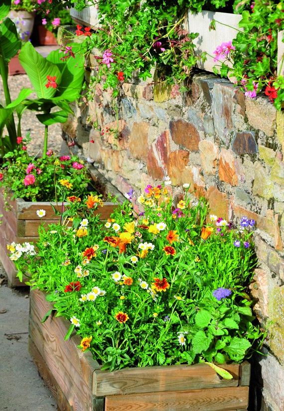 amazing gardening trends for this year diycraftsguru